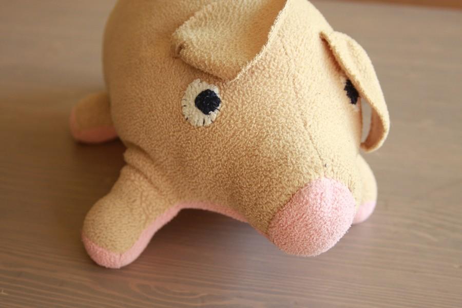 חזירי החדש לאחר הניתוח והרחצה