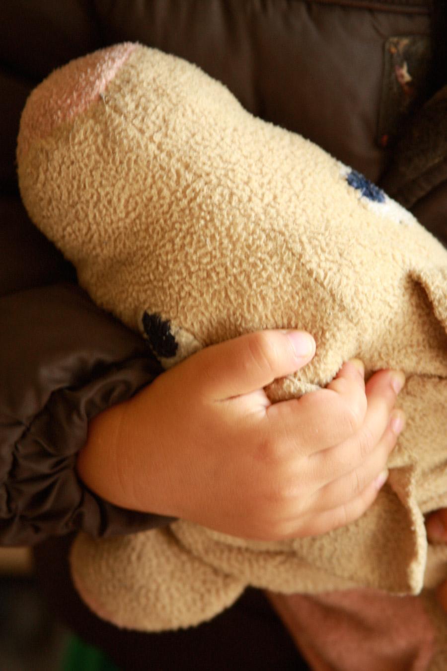 ידיים של ילד מחבקות בובת חזיר
