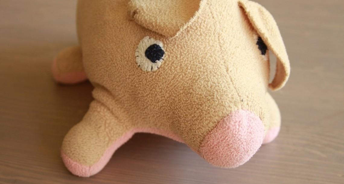 חזירי עובר ניתוח