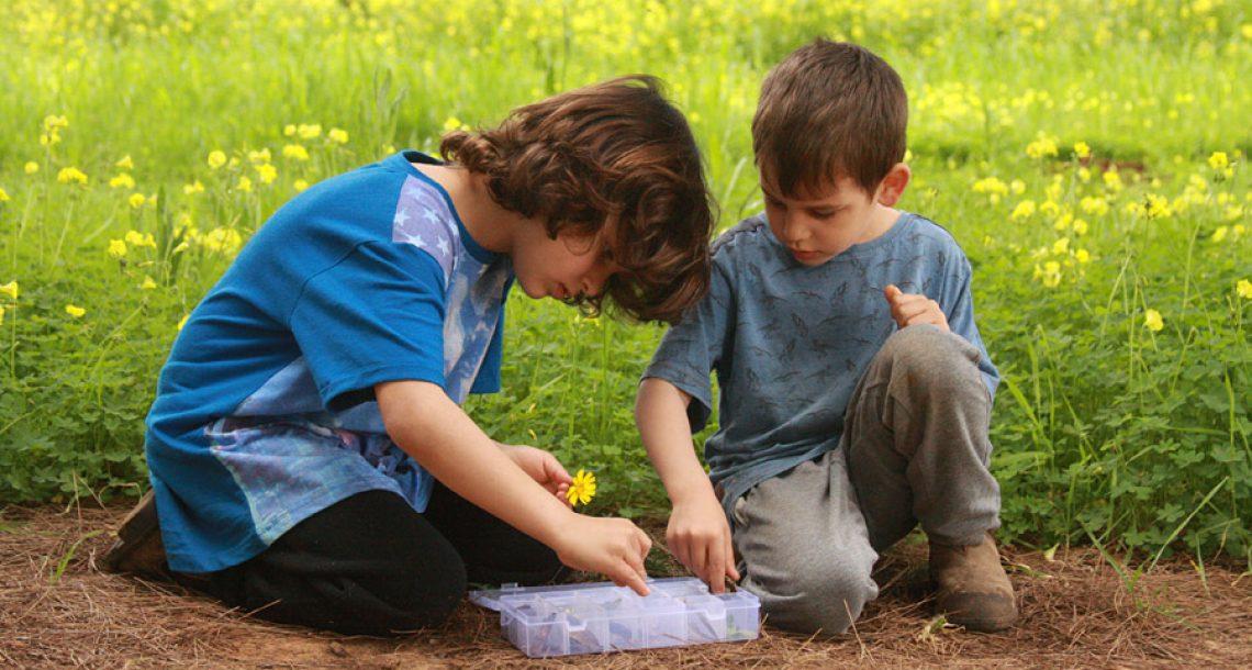 משחק עם ילדים בטבע: חפש את המטמון